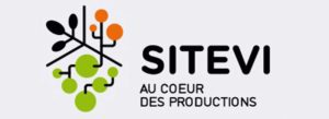 logo-sitevi-2019